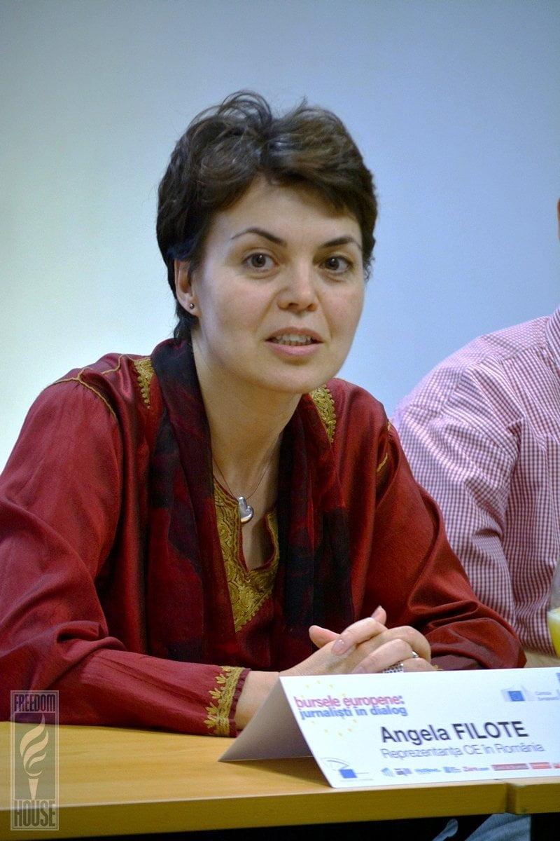 Cu o experienţă de 20 de ani în relaţii internaţionale şi diplomaţie, Angela Filote este, începând din ianuarie 2014, şefa Reprezentanţei Comisiei Europene la Bucureşti.