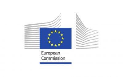 Utilizarea internetului și a datelor deschise & informațiilor de interes public în investigația financiară a fluxului financiar legat de traficul de persoane – cazurile Bulgariei, ItalieiI și României