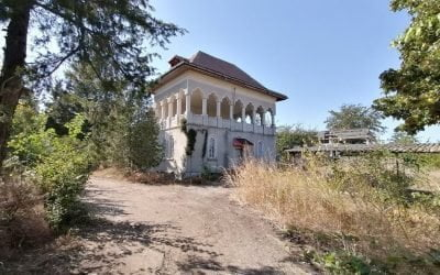 Casa din Teleorman în care s-a născut Constantin Noica a devenit o ruină