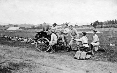 """Documentarul georgian """"Tskhinvali 1920"""" combate propaganda istorică a Kremlinului"""